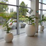big-office-pots-KAMA