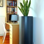 large cylindrical planter