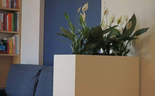 large rectangular planter to outdoor and indoor use