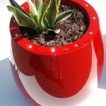 decorative planter with Swarovski crystals