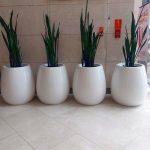 flowerpots-KAMA