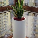 indoor and outdoor cylindrical planter