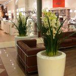 large commercial flower pots