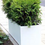 donica z polimerobetonu - idealna do przestrzeni miejskiej