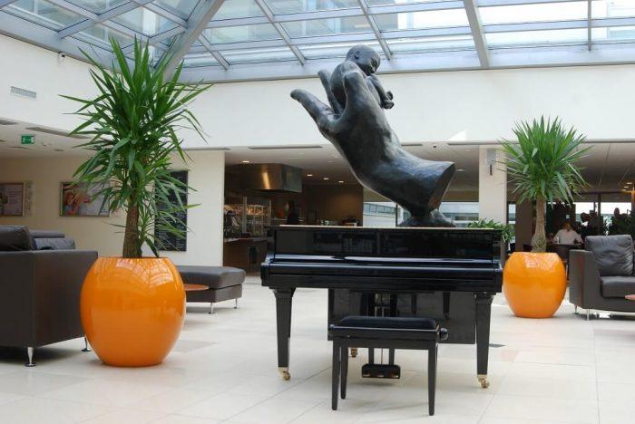 duże donice do biur i hoteli, dostępne w różnych kształtach, rozmiarach i kolorach